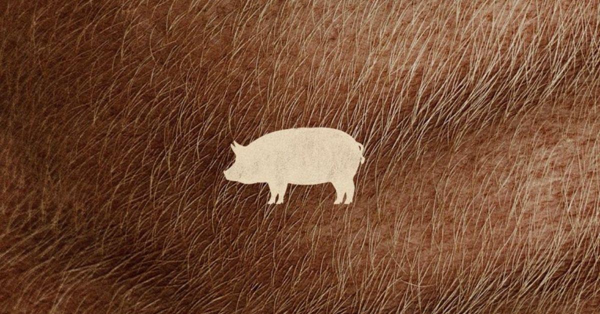 PIG, ¿Quién robó el cerdo de Nicolas Cage?