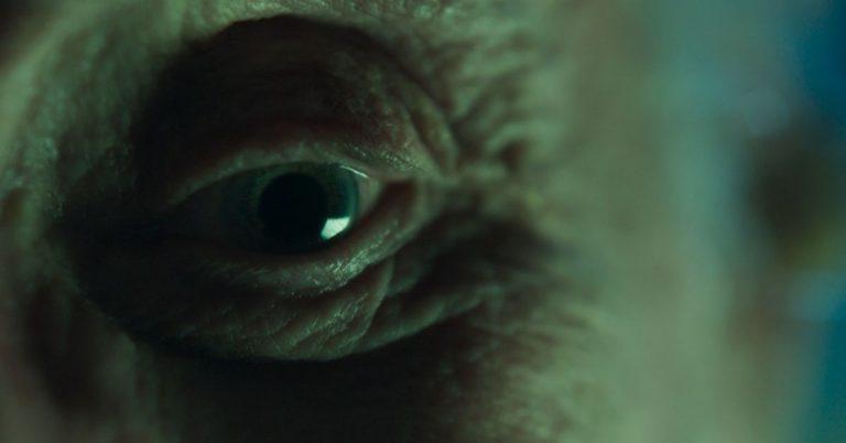 Lee más sobre el artículo Nocturna, la nueva película de Gonzalo Calzada