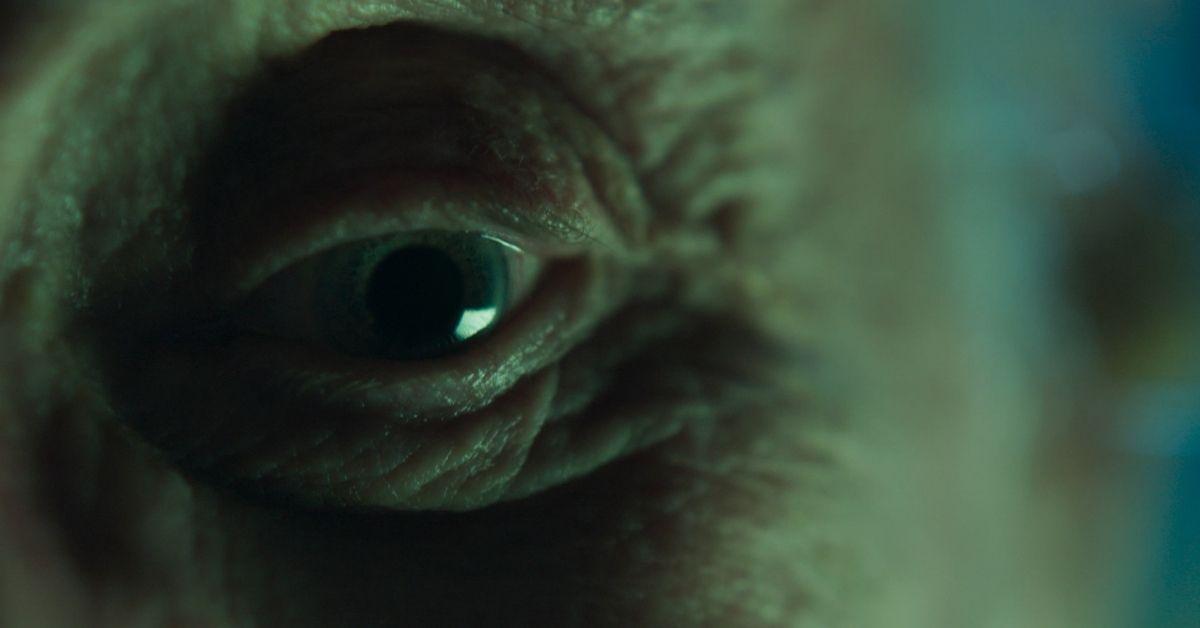 Nocturna, la nueva película de Gonzalo Calzada