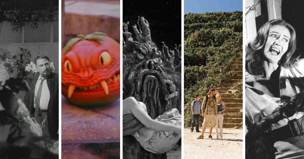 En este momento estás viendo Vegetales asesinos: 5 películas con plantas de terror